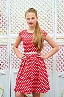 Платье детское Миледи красное в белый горох подростковое для девочки 134,140,146см пояс