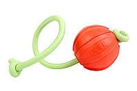 Collar LIKER LUMI 5см - мячик для собак мелких пород со шнуром, который светится в темноте