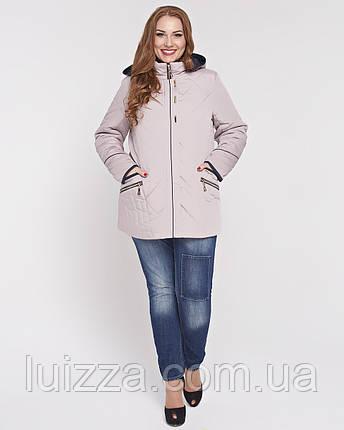 Женская весенняя куртка 50-62рр беж, фото 2
