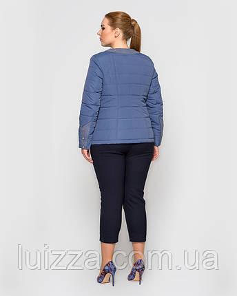 Женская демисезонная куртка с воротом Шанель 48-56рр, синяя, фото 2