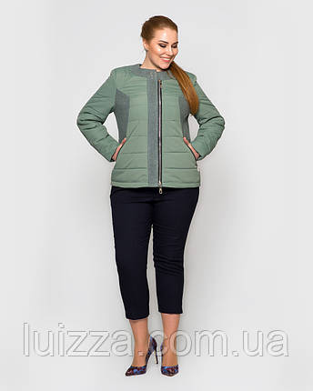 Женская демисезонная куртка с воротом Шанель 48-56рр, полынь, фото 2