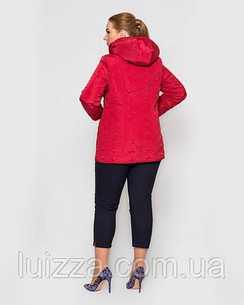 Женская куртка, стеганная узором 50-62рр красная, фото 2