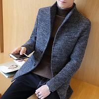 Мужское пальто. Модель 61538, фото 1