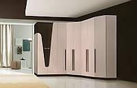 Модульная прихожая Арья. Шкафы в прихожую, гостиную, спальню.