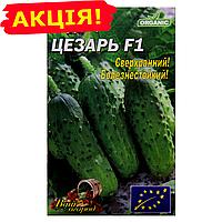 Огурец Цезарь F1 сверхранний семена, большой пакет 5г