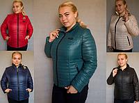 Куртка женская осень весна большой размер Letta