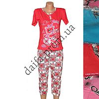 Женская котоновая пижама 5013 (р-ры 42-48) оптом со склада в Одессе.