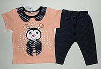 """Детский костюм летний на девочку """"Ladybird"""" 6,9,12,18 мес"""
