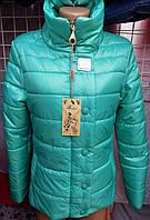 Женская стеганая куртка стойка Fashion весна/осень оптом