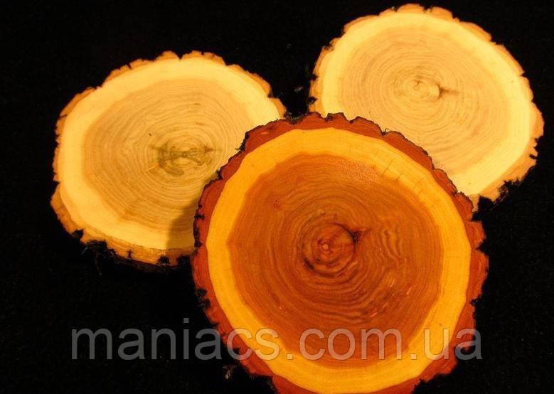 Зріз дерева. Вільха 26 - 30 см