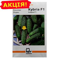Огурец Кибрия F1 сверхранний (Holland) семена, большой пакет 3г