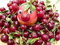 Хендгам Nano gum Лава 50г (запах вишни) Украина Supergum Супергам, Putty, Nano gum, Neogum, Handgum