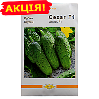 Огурец Цезарь F1 сверхранний (Poland) семена, большой пакет 5г