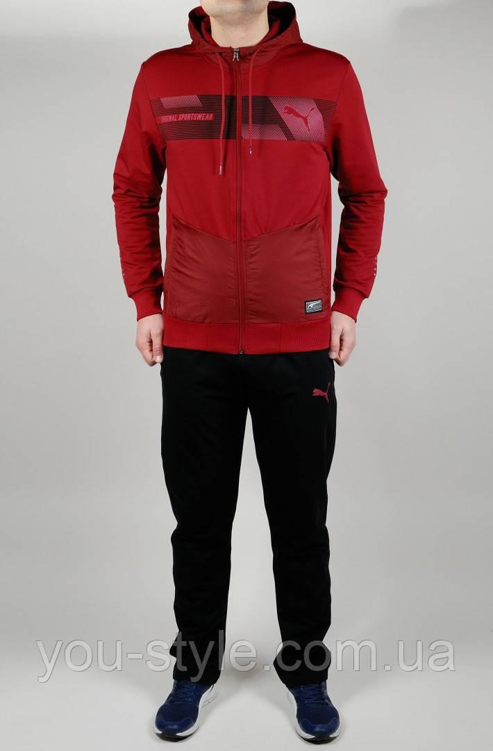 Мужской спортивный костюм Puma 4621 Бордовый