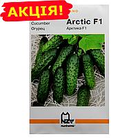 Огурец Арктика F1 ранний (Holland) семена, большой пакет 3г