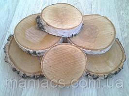Срез дерева. Береза 1,5 - 5 см