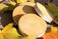 Зріз дерева. Береза 5 - 8 см