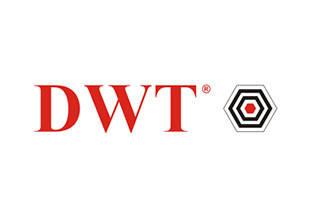 Заточной станок (точило) DWT
