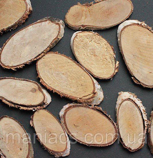 Срез дерева. Береза 8 - 10 см
