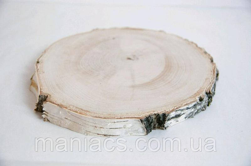 Срез дерева. Береза 16 - 20 см