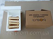 Улей нуклеусный на 1 семью, неокрашенный.Lyson(Польша), фото 3