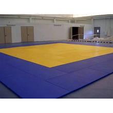Мат борцовский татами 200х100х5 см 160 кг/м3