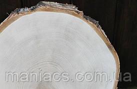 Срез дерева. Береза 36 - 40 см