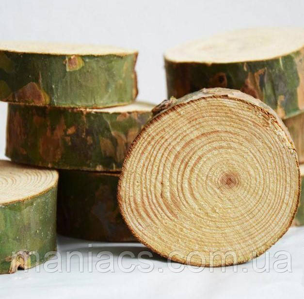 Срез дерева. Сосна 26 - 30 см