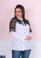 Блузка (50, 52, 54, 56) — софт купить оптом и в Розницу в одессе 7км 56