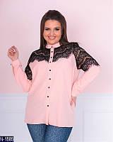 Блузка (50, 52, 54, 56) — софт купить оптом и в Розницу в одессе 7км 50