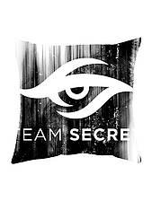 Подушка Игры TEAM SECRET