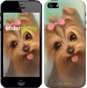 """Чехол на iPhone 5s Нарисованный йоркширский терьер """"928c-21-571"""""""
