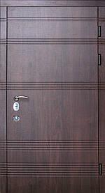 Дверь входная DT105 трехконтурная полотно 110мм