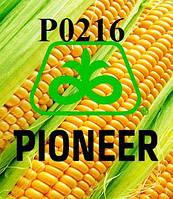 Семена кукурузы Пионер Р0216 ФАО 480 (Pioneer P0216)