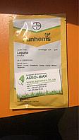 Семена Моркови ЛАГУНА F1 25 000 семян Nunhems