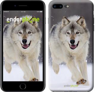 """Чехол на iPhone 7 Plus Бегущий волк """"826c-337-571"""""""