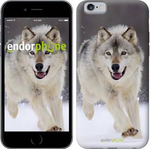 "Чехол на iPhone 6 Бегущий волк ""826c-45-571"", фото 2"