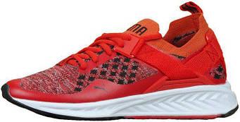 Мужские кроссовки Puma Ignite Evoknit Low Red/White