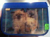 "Пенал на 1 отделения и 1 отворот ""2 щенка, 2 котёнка"" Kalnex"