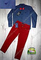 Нарядный костюм синяя рубашка Armani и бордовые брюки
