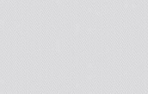 Флизелиновые обои под покраску Vliesfaser MAXX Bara 305 (12,5 x 0,53)