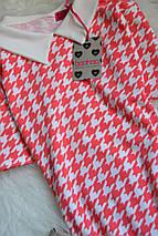 Новое платье с воротничком в принт Boohoo, фото 3