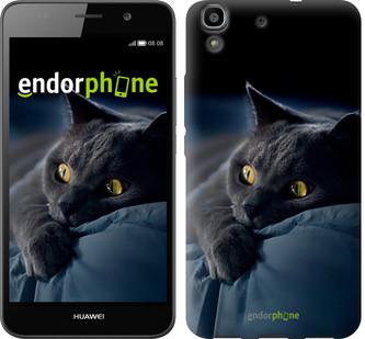 """Чехол на Huawei Y6 Дымчатый кот """"825c-333-571"""""""