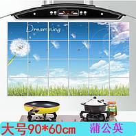 Водостойкая наклейка для кухни Одуванчик, антижировая 600мм*900мм