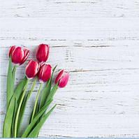 Фотофон Тюльпаны размер 60*60 см