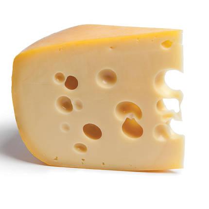 Рецепт сыра Маасдам, фото 2