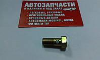 Болт штуцерный (топливный) М10х1