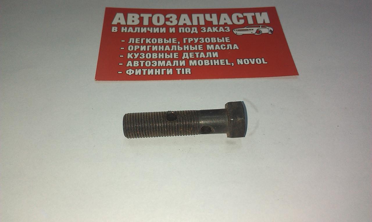 Болт штуцерный (топливный) под 2 штуцера М10х1