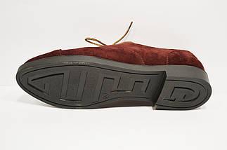 Туфли бордовые замшевые Kento 1005, фото 2