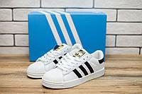 Кроссовки подростковые Adidas Superstar